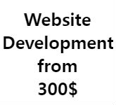 website-development-from-300-dollars